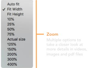 zoom tool in dashboard